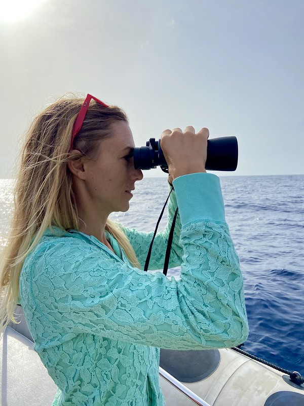 whale watching biosean