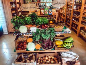 10 Best Vegan Restaurants in North Tenerife