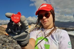 World Cleanup Day Canary Green & Ecoimplicados in Tenerife, Playa de Lima